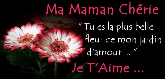 Citation Amour Maman Courte